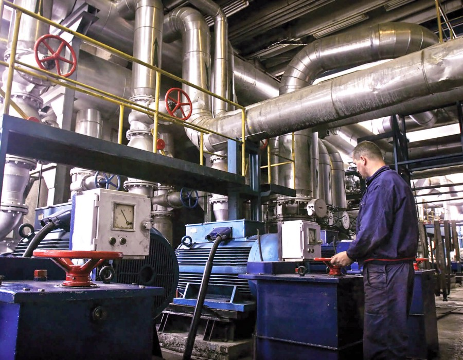 Person working at a plant
